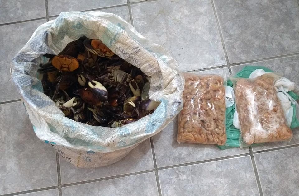 Polícia Militar Ambiental detém comerciante que vendia caranguejo-uçá durante época de defeso em Guriri, na cidade de São Mateus. Crédito: Divulgação/Polícia Militar Ambiental