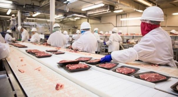 Produção de alimentos - regras de fiscalização podem mudar