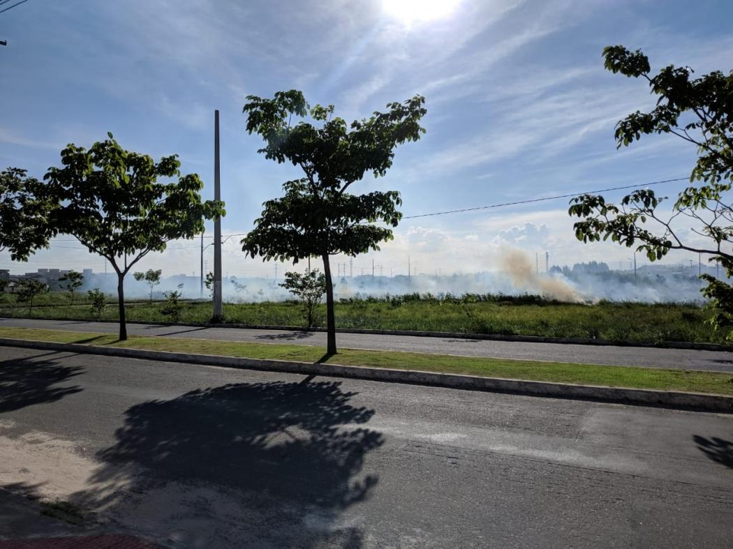 Incêndio atingiu área de restinga em Nova Almeida, na Serra. Crédito: Divulgação | Corpo de Bombeiros