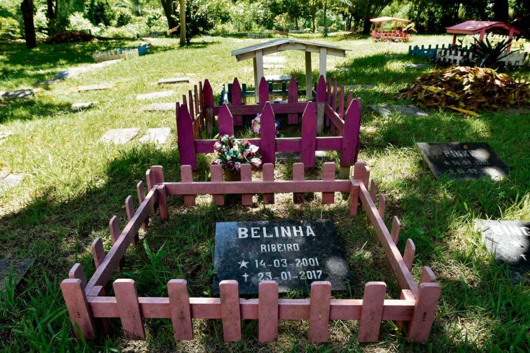 No Cemitério Arca de Noé, o enterro é igual ao de humanos. Crédito: Bernardo Coutinho