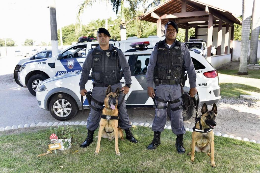 Batalhões da PM contam com unidades K-9: dupla cão e policial. Crédito:    Fernando Madeira