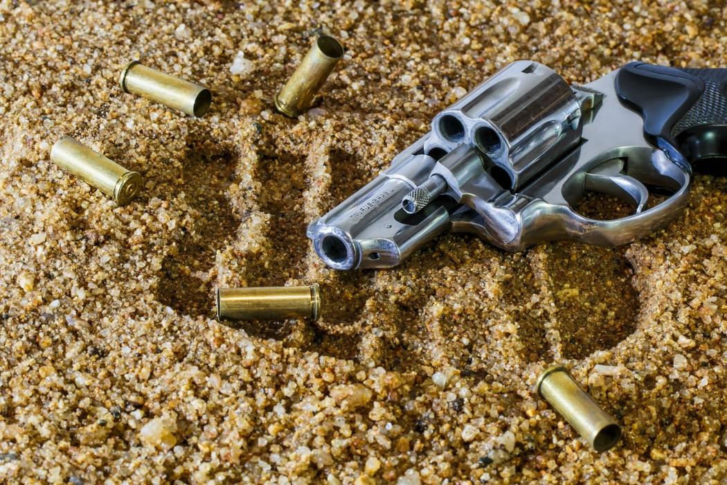 Veja o que é preciso fazer para obter uma arma de fogo em 8 países. Crédito: Pixabay