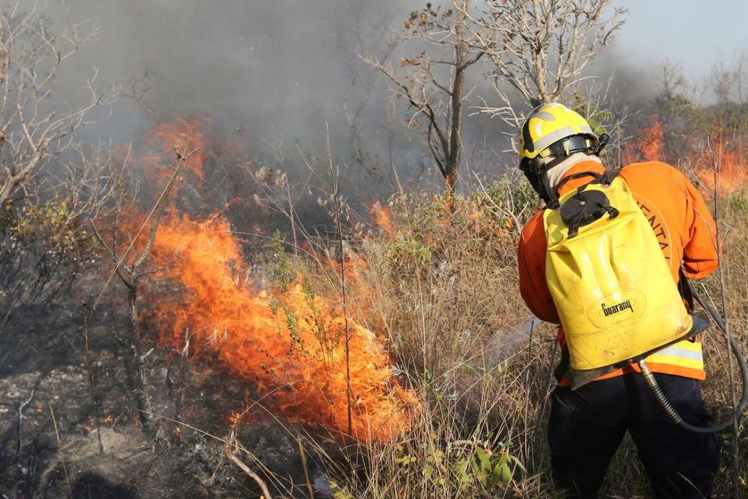 Incêndio de grandes proporções atinge o Parque Nacional. Crédito: Fabio Rodrigues Pozzebom/Agência Brasil