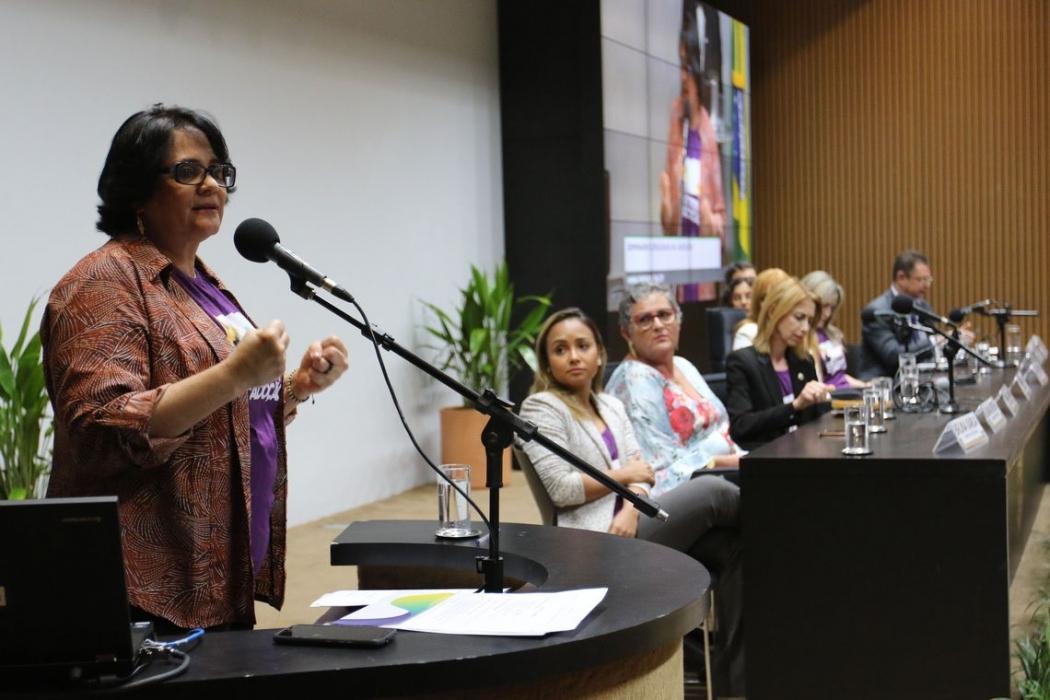 A ministra da Mulher, Família e Direitos Humanos, Damares Alves, participa do seminário Cruzada da Adoção - Adoção 9 meses: Família para todos, na Câmara dos Deputados. Crédito: Fabio Rodrigues Pozzebom/Agência Brasil
