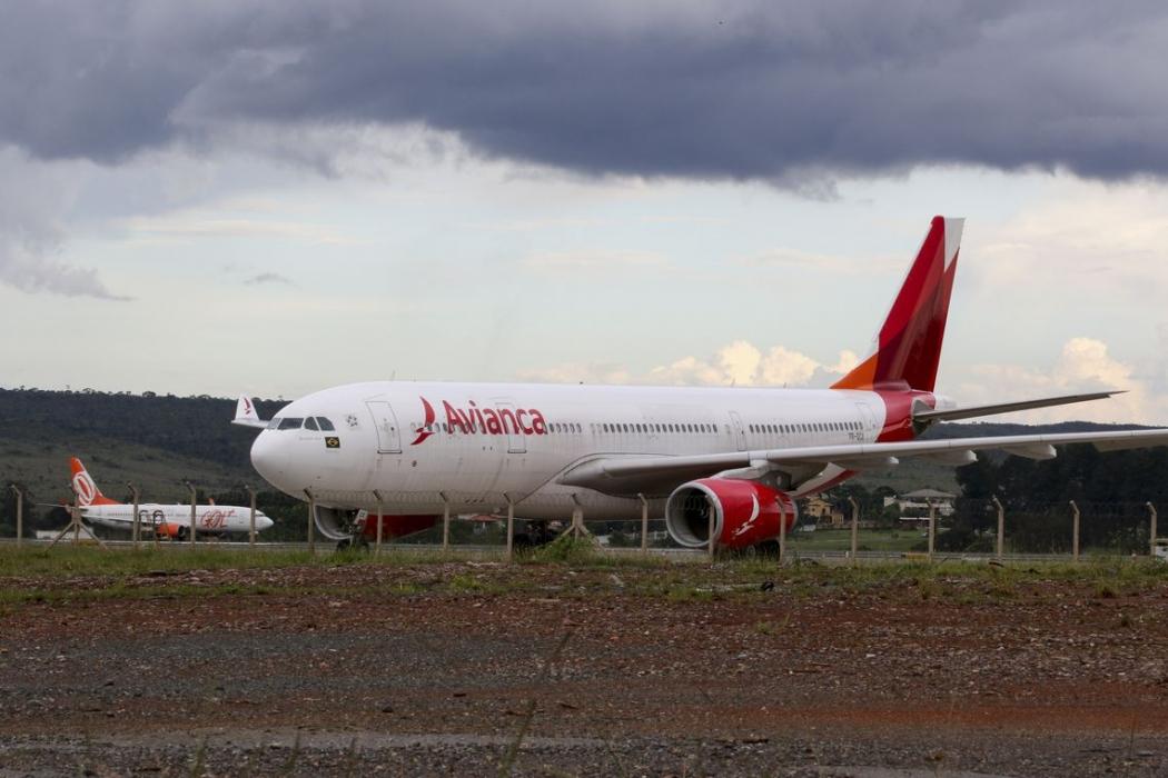 Para Anac, Avianca perdeu direito a voos. Crédito: Fabio Rodrigues Pozzebom/Agência Brasil