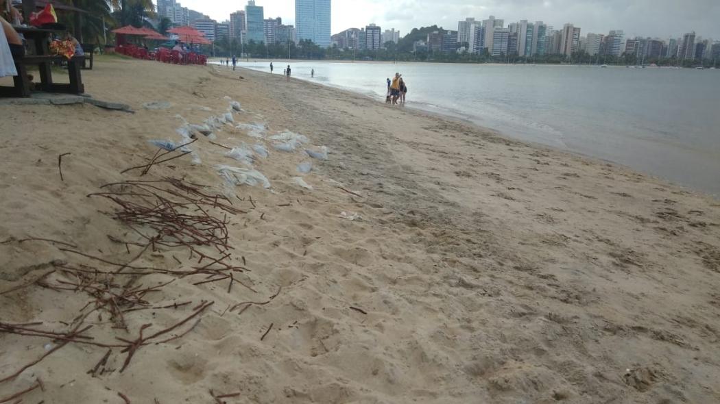 Serão retirados 50 mil metros cúbicos de areia de jazidas marinhas, que serão colocados na Curva da Jurema. Crédito: Caíque Verli