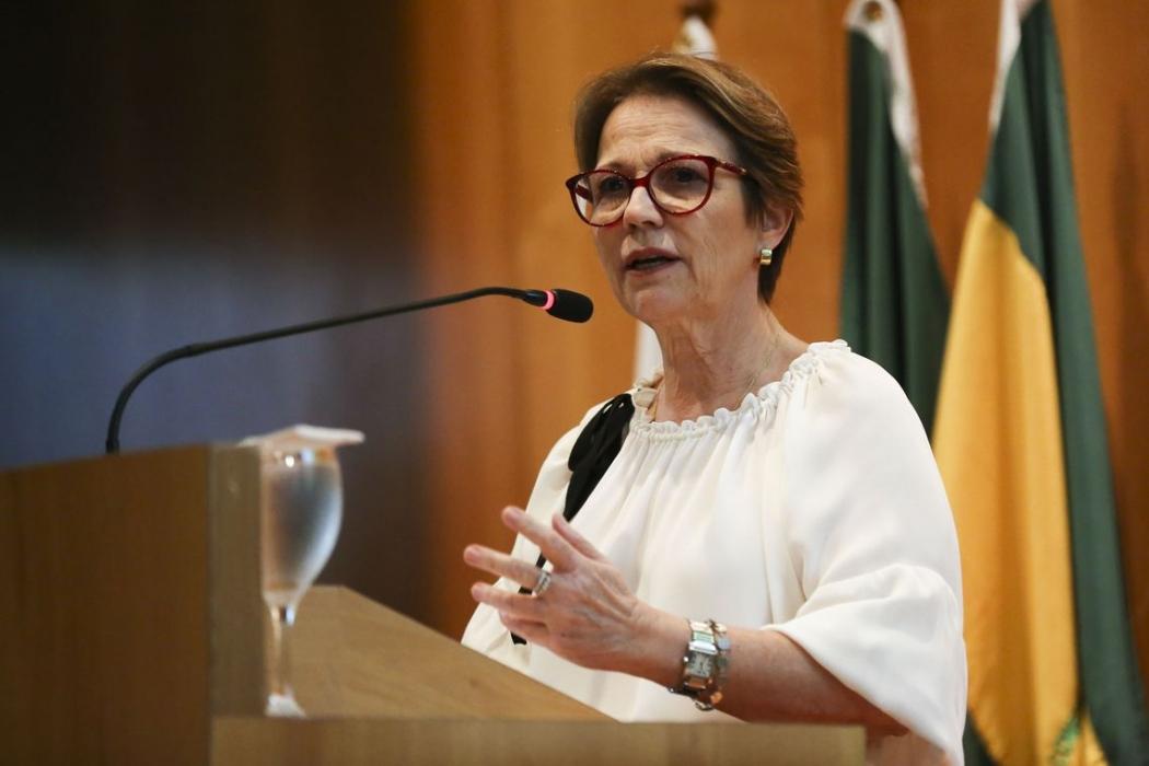 Ministra da Agricultura, Tereza Cristina . Crédito: José Cruz/Agência Brasil | Arquivo