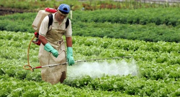 Uso de agrotóxico no campo