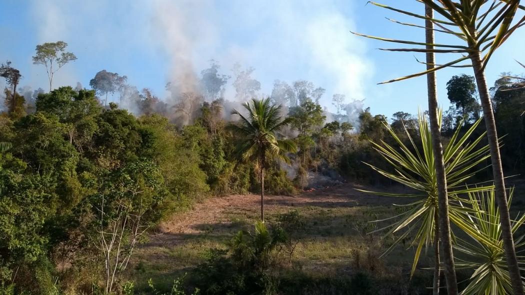 Foco de incêndio foi registrado em área de vegetação nativa em Marilândia, no dia 15 de julho deste ano. Crédito: Corpo de Bombeiros