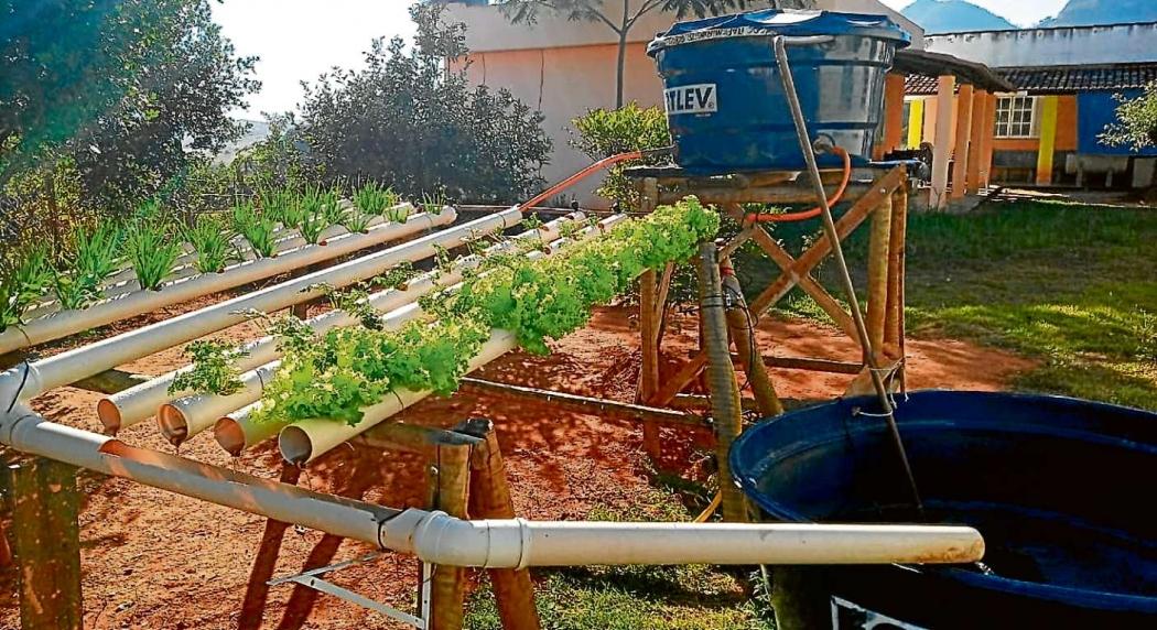 Sistema integrado de criação de peixes e cultivo de hortaliças  . Crédito: IFES/DIVULGAÇÃO