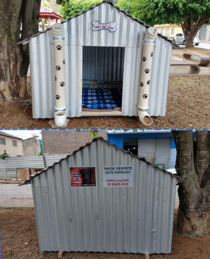 Dois amigos constroem casas para cães de rua em Guaçuí. Crédito:   (Foto Divulgação)