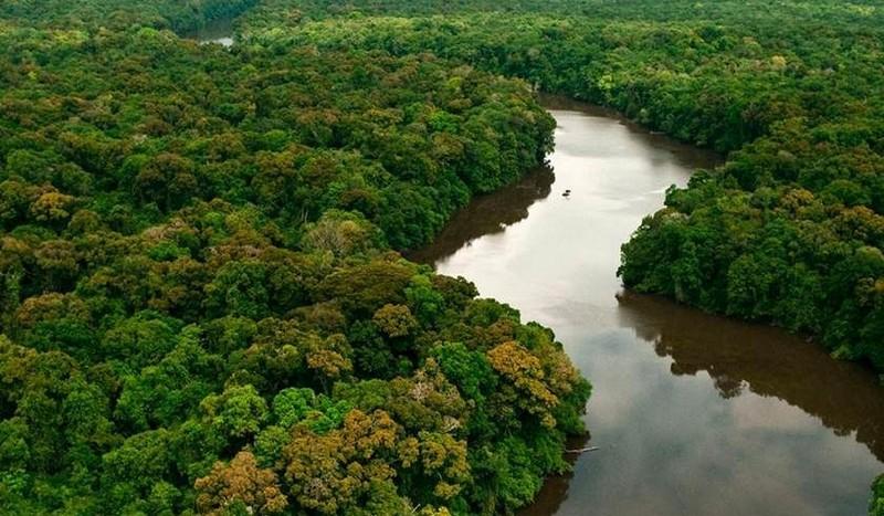 A Amazônia tem um papel fundamental na regulação do clima global. Crédito: Agência Brasil